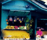 Costa Rica: No Artificial Ingredients